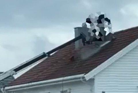 To personer arbeidet på et tak i Bodø, hvor de blant annet fjernet et måkereir.