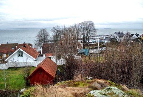 FEM NYE BOLIGER: I forgrunnen på bildet kommer de nye boligene, sett fra Ola Abrahamssons vei. Midt i bildet ligger Munchs hus. Det hvite huset til venstre tilhører Bodil og Ole Christian Due.