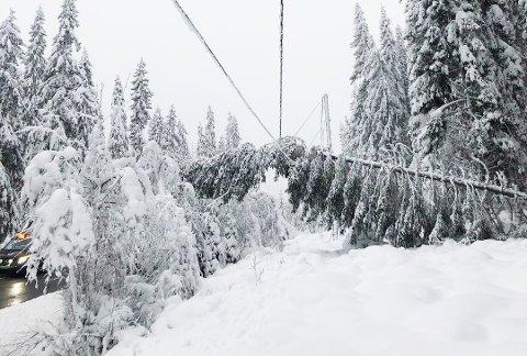 Det har vært mange problemer med både trær som veltet og ledningsnett som henger lavt i Innlandet lørdag. Dette bildet ble tatt av Elvias mannskaper torsdag