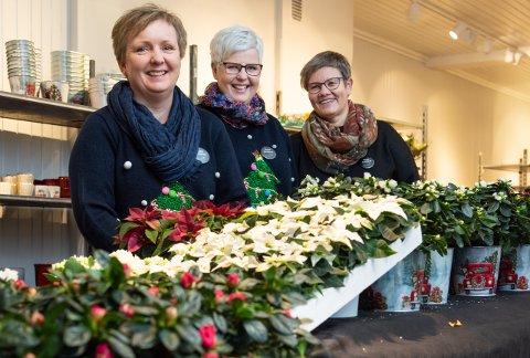 NYTT UTSALG: Fram til nyttår vil Storgata Blomster på Jevnaker ha et eget romslig juleutsalg. Therese Klemmestad, Elin Strømsodd og Lise Haugli.