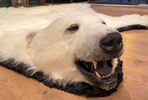 SELGER ISBJØRNSKINN: Jan Sverre Pedersen fra Alta håper at noen andre finner gleden i isbjørnskinnet som har ligget i kjelleren i 12 år.
