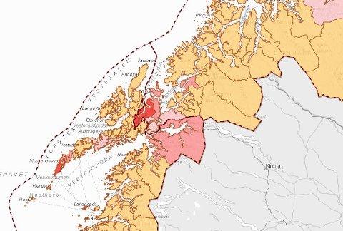 Fine farger: Det er lite rødfarge å se i vår del av Nord-Norge, noe som er et godt tegn, ikke minst med tanke på bevegelse innad i Hålogaland i pinsen.