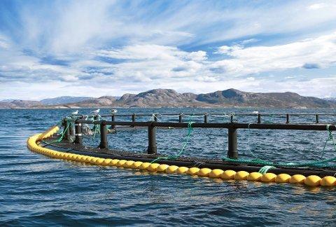 MÅ FJERNES: Utstyr som er lagret i sjøen må fjernes.