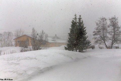 VINTERLIG: Slik så det ut på Skjervøy søndag morgen. Det er ventet enda mer snø de neste dagene.