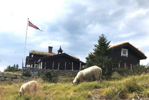 Utvider: Bruttoareal på hytter i aktuelle områder på Sjusjøen har hatt maks grense på 125 kvadratmeter. Nå gis det stadig dispensasjon for hytter opp til 150 kvadratmeter.