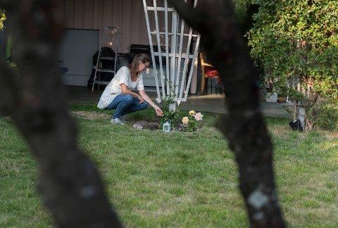 Savn: Katten Marius er nå gravlagt i hagen til matmor Ragnhild H. Taubøll. Treet i forgrunnen var kattens klatretre.