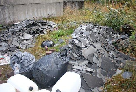 DUMPEPLASS: Uvedkommende har tatt seg til rette på denne tomten som ligger like ved bruen fra Smeaheia mot Soma. Takplatene som er dumpet skal inneholde det kreftfremkallende stoffet asbest, som klassifiseres som spesialavfall.