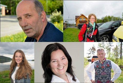 Håvard Jensen (Frp) (oppe til venstre), Elisabeth Strengen Gundersen (Sp) (oppe til høyre), Cecilie Agnalt (Ap) (nede til venstre), Britt Egeland Gulbrandsen (KrF) (nede i midten) og Erik Unaas (H) (nede til høyre) er valgt inn som representanter i fylkestinget.
