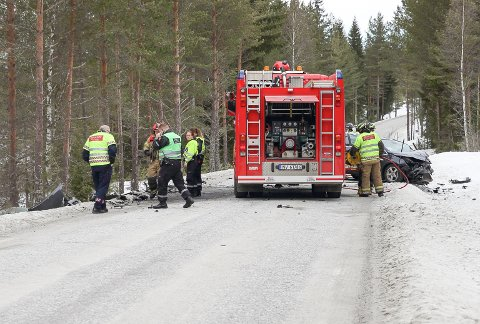 FØRTE IKKE FREM: Høyesterett har slått fast at forsikringsselskapet til bilen som ble brukt i dødsulykken mellom Notodden og Bolkesjø i 2014, ikke må betale de pårørende mer i erstatning.