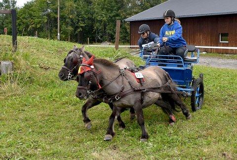 FART: Kusk Silje Mari Otterlei Husby og groom Runar Mauset med ponniene Alvin og Baron av Bergli på ett av hinderne under søndagens maraton i sportkjøring på Nymoen i Surnadal.