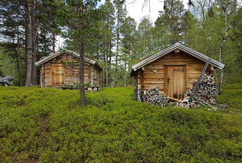 SKOGSBU ELLER HYTTE: Grunneierne Hugo Pedersen og Jorunn Fiske Pedersen mener denne skogsbua med tilhørende uthus brukes som hytte, noe de mener ikke er i tråd med opprinnelig byggetillatelse.