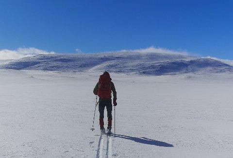 SLIK KAN DET BLI: Fra torsdag ligger det an til et fantastisk vær over hele Fjellregionen. Dette bildet fra Kvikne er et av de mange innsendte bildene vi fikk tilsendt fra våre lesere i påsken.