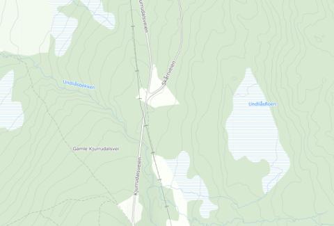 Kart over området der bjørnen er observert i Kjurrudalen. Kilde: 1881