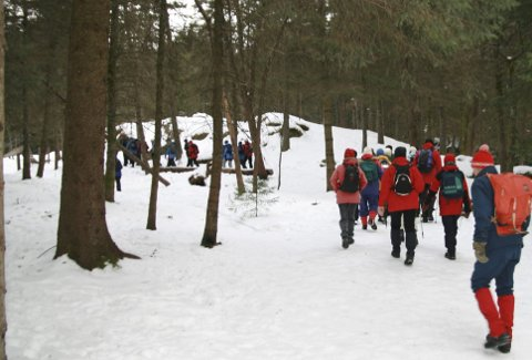 Fløyen og vinter føles nærmest perfekt for turgruppen til turlaget som onsdager i vinterhalvåret er lett å treffe på turstiene i skogene på Fløyen. (Foto: TOM R. HJERTHOLM)
