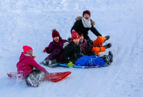 Vinterglede: Disse ungene var blant de mange som boltret seg i det flotte, kalde vinterværet forrige helg. De neste dagene blir overskyet, men det er like fint å være ute med akebrett, ski og skøyter.