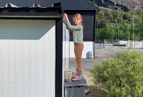 Oda Serina Tranøy Lorntzsen og flere andre barn bruker søppeldunker og steiner for å komme seg opp på taket på lekeplassen. Hun har hoppet ned fra siden tidligere, men denne gangen hoppet hun fra det høyeste punktet, og landet forkjært.