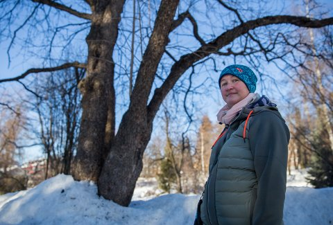 Trærne knekker i Søndre Park i Lillehammer etter vinterens store snøfall. Anita Storli er bekymret for at noen skal skade seg.