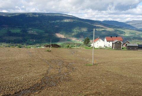 Det var langs stolpene på dette jordet i Rudsbygd, at kantsonen ble fjernet og dyrket opp. Gardstunet på bildet tilhører ingen av de berørte gardene.