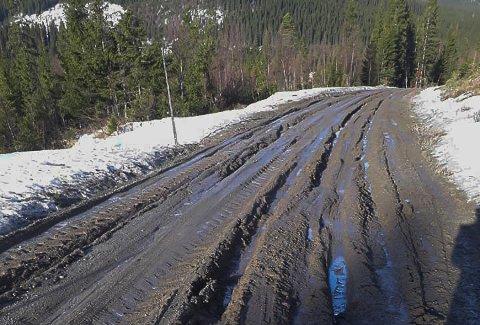 GJØRMEHULL: Veien inn mot Unkervatnet var så dårlig at Lill Eirin Olderli valgte å snu.