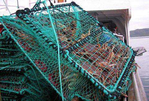 BESLAG: Fiskeridirektoratet har de siste årene beslaglagt flere ulovlige kongekrabbeteiner i Finnmark-