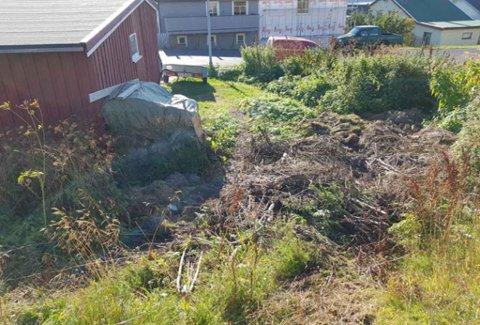 HAGEAVFALL: - Jeg syns ikke noe om det, sier Helge om dumpingen.