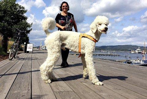 GLAD: Hundeeier Pernille Hammerø er glad for at anklagene om dårlig stell av kongepuddelen Lord er lagt bort. Foto: Lars Ivar Hordnes
