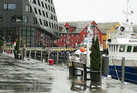 FLYTER RUNDT: Dag Engebrethsen tok dette bildet fra kaia i Tromsø. Det viser at søppelet flyter på kaiområdet. Og verre skulle det bli, forteller Engebrethsen.