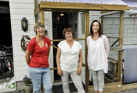 Oppfordrer folk til å besøke miabua: Leder i Miabua, Vigdis Gyring Kval, leder i Dyrebeskyttelsen Larvik og Sandefjord, Berit Nilsen og frivillig i Dyrebeskyttelsen, Heidi Abrahamsen, oppfordrer folk til å ta turen til Miabua for å holde kattene med selskap. foto: vårin alme