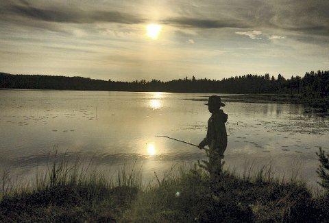 Fine kvelder: Juli 2019 har gitt oss mange fine dager og kvelder med bad og fisking.Foto: Anita Høiby Gotehus