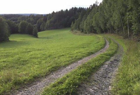 KULTURLANDSKAP: Det særegne norske landbruket trener en politikk som legger til rette for at vi fortsatt kan ha familielandbruk i hele landet, skriver Martha Mjølnerød. illustrasjonsfoto