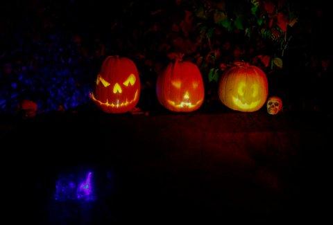 Oslo  20161031. Halloween feires over hele landet. Det blir mye knask og knep. Her fra Nordberg i Oslo. Foto: Terje Pedersen / NTB scanpix