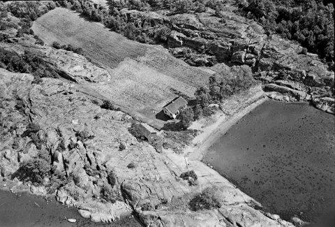 Østerøya: Flautangen på 1950-tallet. Foto: Hvalfangstmuseets fotosamling