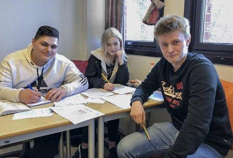 Regnet mange stykker: Adam Irshaid (18) fra Eidsberg, Sandra Marielle Solberg (16) fra Trøgstad og Erik Mårud (17) fra Ørje jobbet iherdig med matte på lørdagen.