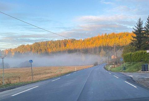 Tåke, som dette langs fylkesvei 120 mellom Elvestad og Tomter, kan føre til isdannelse på veier. Meteorologen ber sjåfører passe på.
