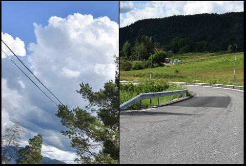 """I Drammen kommunes tjeneste """"Meld inn feil"""" kan innbyggerne varsle om feil og mangler rundt omkring. Her er to eksempler - lapping av asfalt i Markveien, samt trær som vokser inn i strømledninger."""