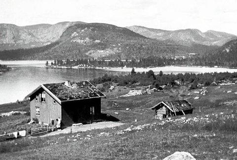 1918: Ifølge Alexander Brekke er dette bildet tatt i 1918 og han mener bildet viser at eiendommen hans har vært en blanding av innmark og gårdstun i 100 år.