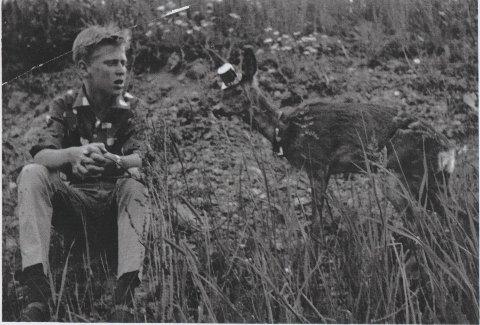 17.mai-feiring: KJell Ivar Fossnes, her 12 år gammel, sammen med Bambi, som for anlednigen hadde pyntet seg til 17.mai med   med en liten hatt og bjelle.