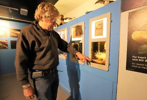 - Denne Kamuflasjereka er immun mot den giftige Muddersjørosen, forteller akvariesjef Klaus Bareksten.