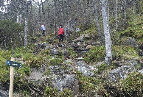 Ett av retningsskiltene som har fått stå i fred, er dette på vei opp mot Lyderhorn fra Kjøkkelvik-siden. (Foto:  BENTE-LINE SVELLINGEN)