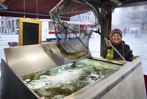 Norsk kysttorsk i flere størrelser svømmer rundt i de to store fiskekummene, og Florencia Mondelli finner frem et flott eksemplar til ære for fotografen. Foto: TOM R. HJERTHOLM