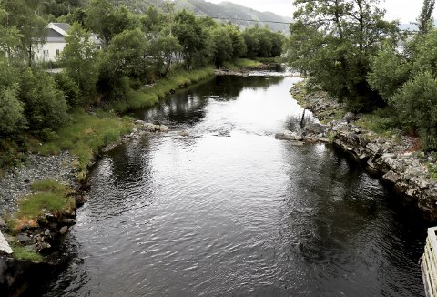 Så er også «Det internasjonale villaksens år» over, og en oppsummering av 2019 i Bergens eneste lakseførende elv i Arna, viser at alt er stort sett ved det normale, og fremtiden bør være sikret etter et svært positivt stamfiske. Foto: TOM R. HJERTHOLM