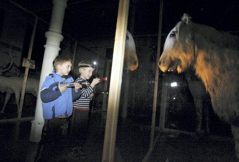 Det ble en spennende kveld for Kristian og Jonas som var blant de aller første som var med i mørket på museet for 13 år siden. Foto: VIDAR LANGELAND