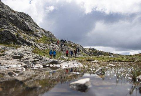 7-fjellsturen klan kanskje virke vel anstrengende for mange, og de lander heller på 4-fjellsturen som og gir både T-skjorte og diplom. 3-fjellsturen arrangeres i år for tredje gang over Fløyen, Rundemanen og Sandviksfjellet. Foto: EMIL WEATHERHEAD BREISTEIN