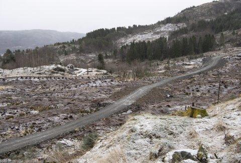 Dette er en del av den nesten to mil lange skogsbilveien som er ferdig og i bruk.
