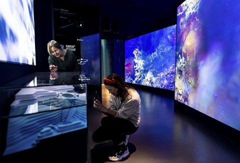 Mye spennende å studere i den blå verdenen under havoverflaten. Storeblå tar de besøkende med inn i oppdrettslaksens verden under vann. Foto: THOR BRØDRESKIFT