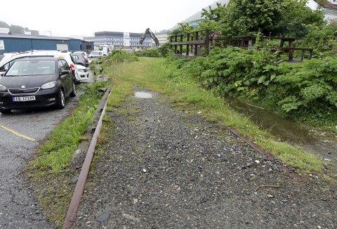 På disse delvis skjulte jernbaneskinnene har det i tidligere tider rullet tog med de aller første togpassasjerene ut og inn av Bergen by. Nå ligger det delvis tilgrodd at gress og mose.  Foto: TOM R. HJERTHOLM