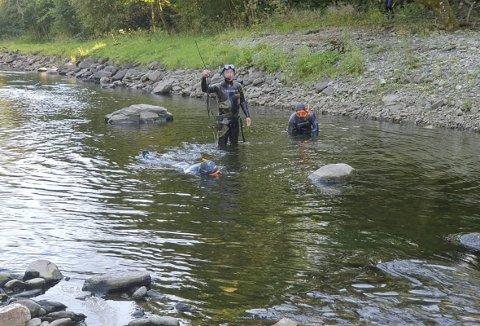 Sportsfiskerlagets egne dykkere tok forleden en stikkprøve, og denne viste at det var fint lite fisk i elven. Noen to til ti kilo dukket opp, men alt i alt var det tyn Foto: ØYSTEIN LERÅS