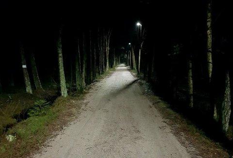 Mer tilgjengelig: 35 parklys gjør denne alleen ved lysløypa på Begby lettere å bruke også på kveldstid. Før var det helt mørkt her.