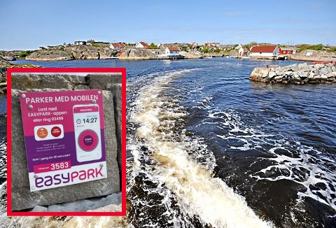 Lauer er et gammelt fiskevær rett på utsiden av Skjærhalden. Stedet besøkes hyppig  av båtfolk om sommeren pluss at det er en del fritidsboliger på øya.  Der er det nå satt opp EasyPark-skilt.