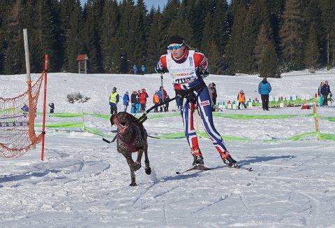 MEDALJER: Junioren Stine Lyse Klevengen og hunden Gaia  tok gull og sølv i EM. Foto: Lotte Friid Fladeby.